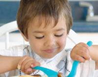 Consejos para que los niños no rechacen la comida de casa