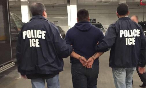 ICE oficializa arrestos de indocumentados en las cortes