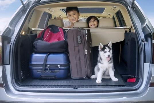 dos niños sonriendo dentro de un carro.