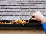 Llegó el otoño: tenga su casa lista para esta bella estación