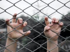Tras 6 muertes, ¿qué hace el gobierno para garantizar la seguridad de los niños a su cuidado?